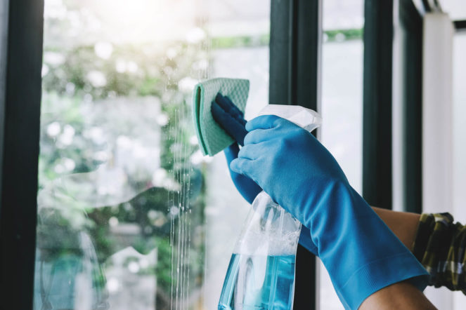 spring cleaning - clean windows